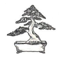 estilo bonsai moyogi